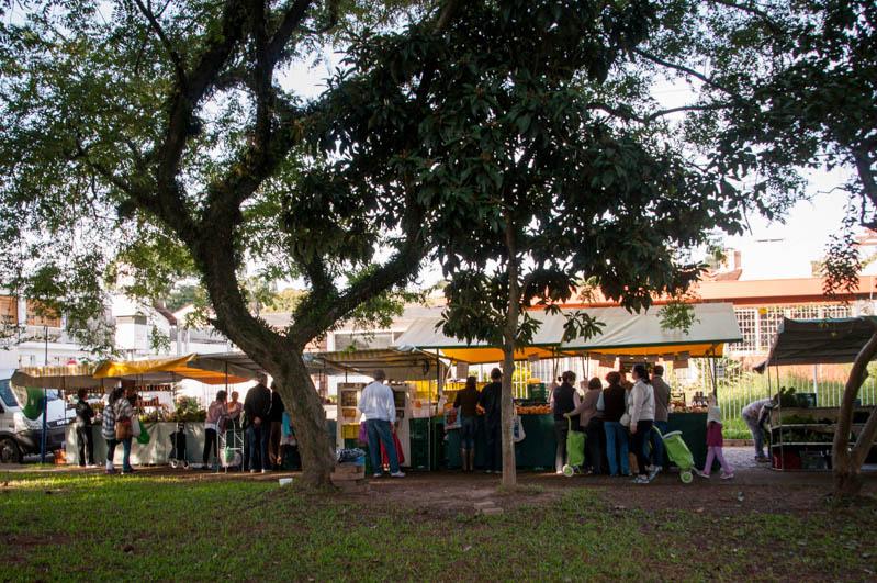 02 _ Feira Orgânica Três Figueiras Porto Alegre _ Bruna Gobbi